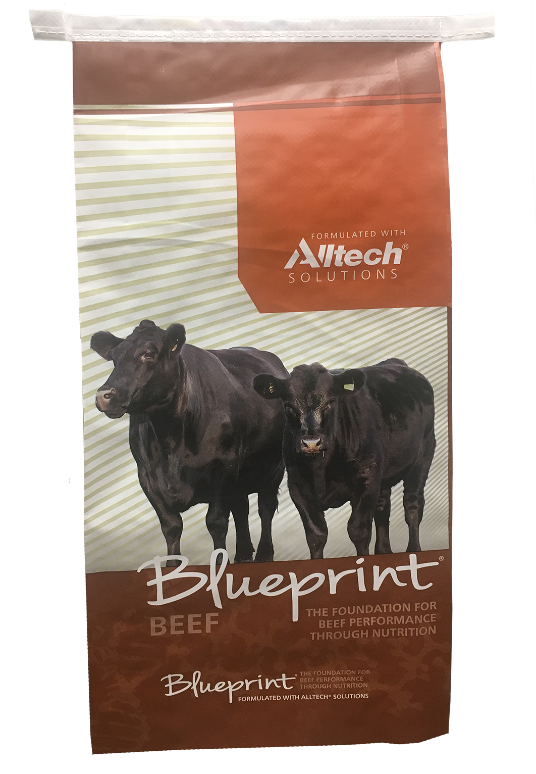 Blueprint® High Mag Mineral with ClariFly®